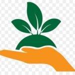 Agriculture Department Punjab latest jobs in Punjab
